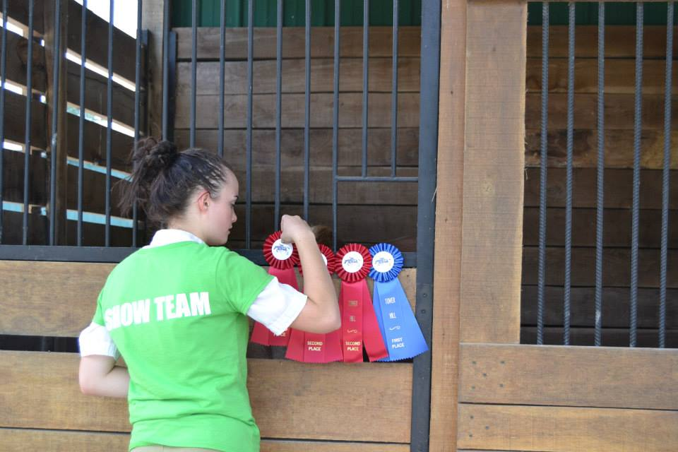 Amy Nelson Equestrian